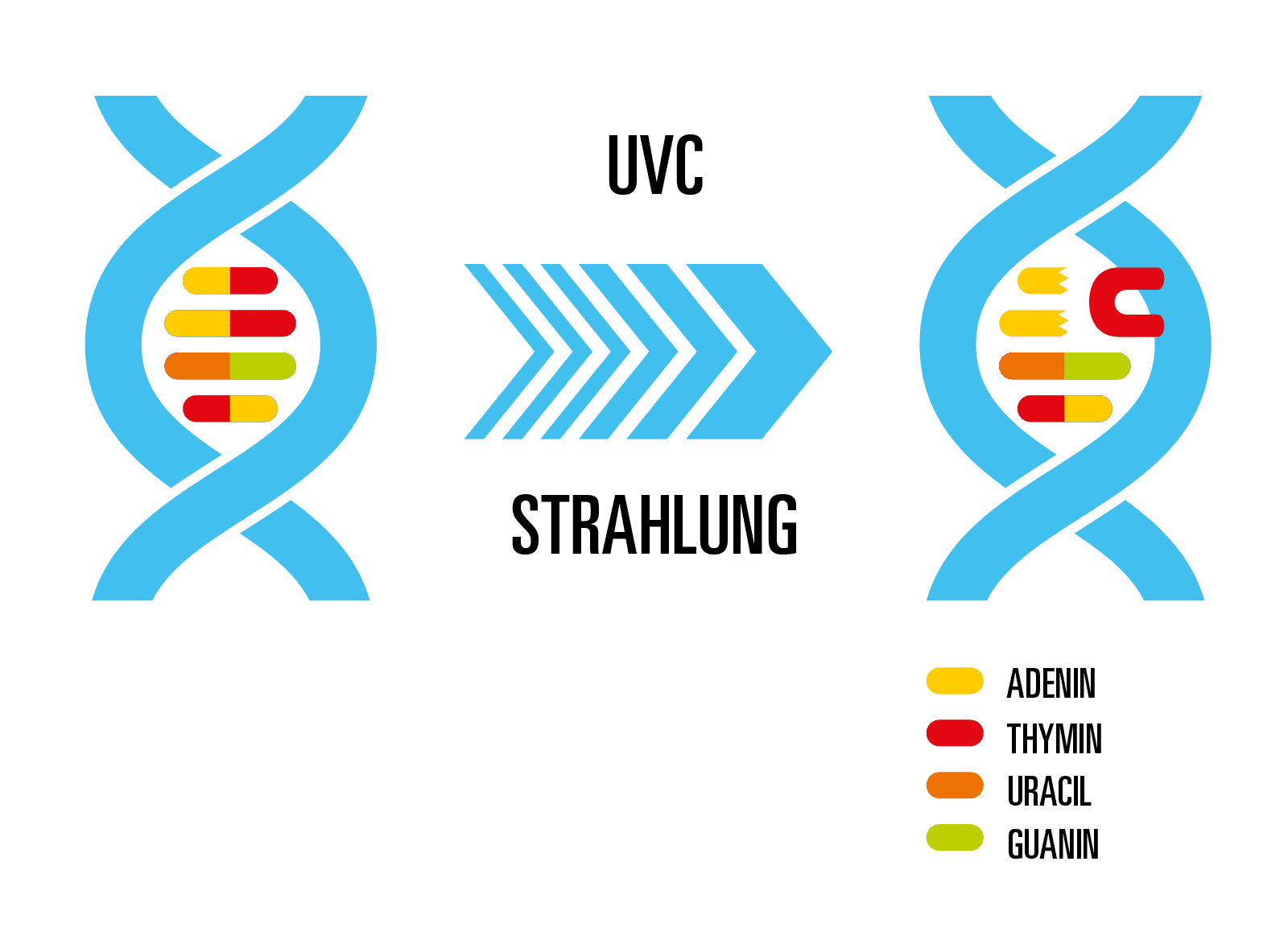 Was ist UV-C-Licht?